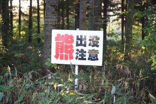 森の前にある看板の写真・画像素材[1045052]