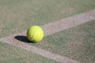 テニスボールの写真・画像素材[1045108]