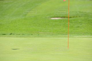 ゴルフ場のグリーンの写真・画像素材[1045834]