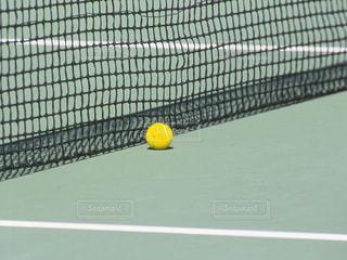 テニスボールの写真・画像素材[1045835]