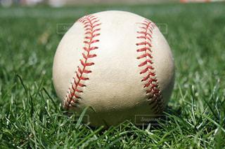 野球のボールの写真・画像素材[1046645]