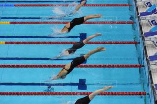 水体を泳ぐ人たちのグループの写真・画像素材[1046656]