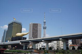 東京スカイツリーの写真・画像素材[1048694]