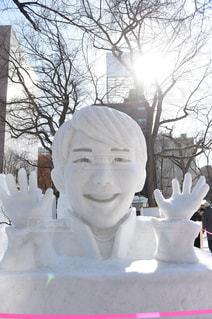 雪像の写真・画像素材[1049142]
