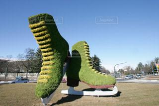 フィギュアスケートの靴の写真・画像素材[1052007]