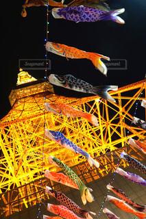 カラフルな鯉のぼりの写真・画像素材[1147088]