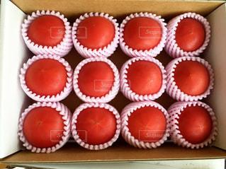 熊本産塩トマトの写真・画像素材[1031787]