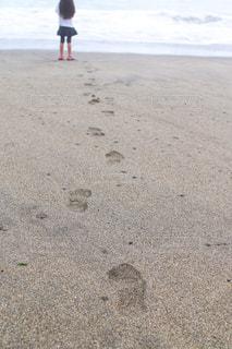 波を確認する女の子の写真・画像素材[1118104]