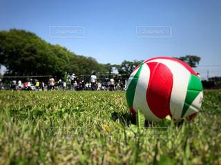 屋外でバレーボールをする人たちの写真・画像素材[1141806]