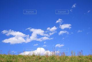 爽やかな空の写真・画像素材[1187479]