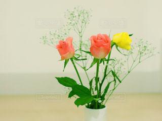 花瓶の花の写真・画像素材[1837797]