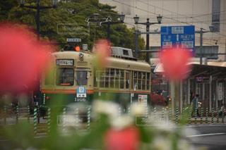 チューリップ越しの路面電車の写真・画像素材[1045183]