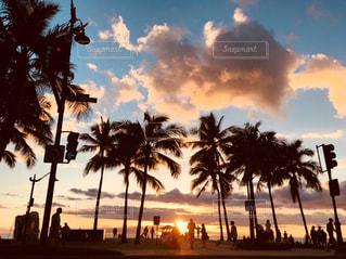 ヤシの木とビーチの写真・画像素材[1032930]