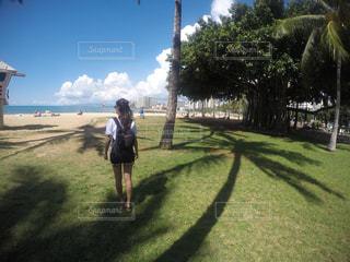 ビーチを散歩の写真・画像素材[1039396]