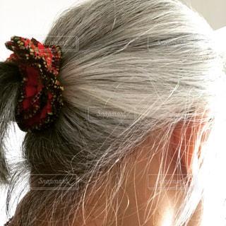 グレイヘアの女性 髪アップの写真・画像素材[1281087]