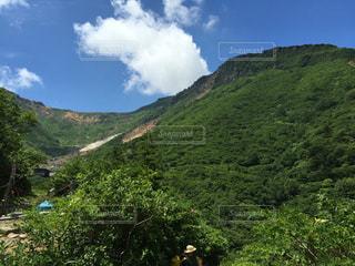 近くに緑豊かな緑の丘陵のアップの写真・画像素材[1032791]