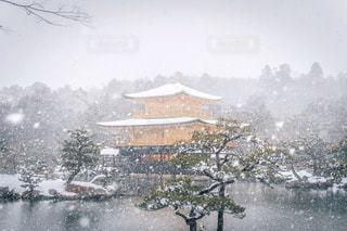雪 - No.316043