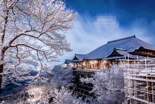 清水寺の写真・画像素材[316045]