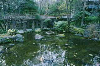 庭園の写真・画像素材[1034105]