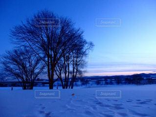 景色の写真・画像素材[1098211]
