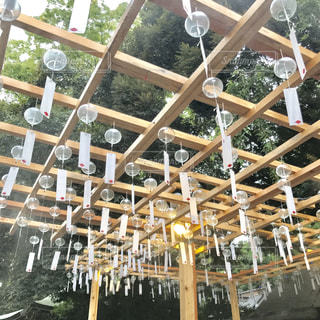 氷川神社の風鈴の写真・画像素材[1070615]