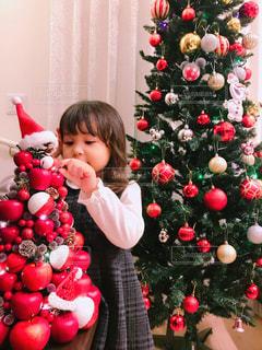 クリスマス ツリーの写真・画像素材[1596062]