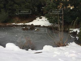 凍結した池の写真・画像素材[1052210]