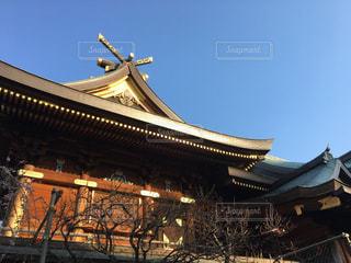初春の湯島天神の写真・画像素材[1062062]