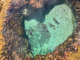 奄美大島のハートロックの写真・画像素材[1035184]
