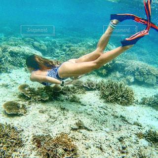 フィリピンの海で泳ぐ女性の写真・画像素材[2091242]