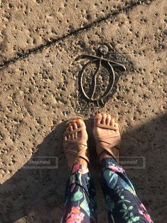 女性の足とホヌの写真・画像素材[2091243]
