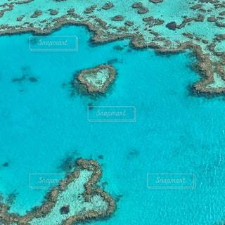 青と緑のサンゴ礁の写真・画像素材[2333806]