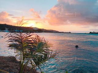 グアムの海の写真・画像素材[1035144]