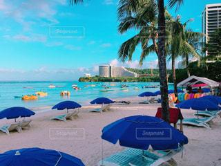 ビーチに青い傘でヤシの木のグループの写真・画像素材[1070230]