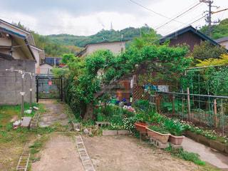 家の前の庭の写真・画像素材[3142857]