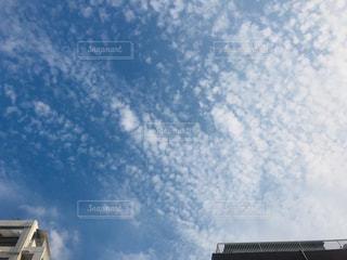 うろこ雲の写真・画像素材[1507651]