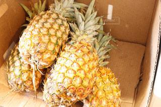 ハワイのパイナップルの写真・画像素材[1038099]