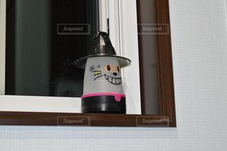 カメラの前で座っている猫の写真・画像素材[1057350]