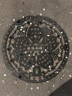 鉄の桜と花吹雪の写真・画像素材[1108809]