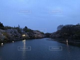 公園の写真・画像素材[1293484]