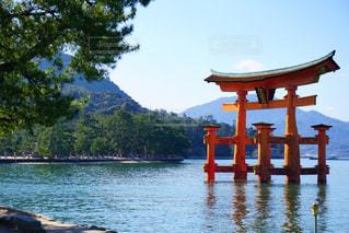宮島の風景の写真・画像素材[1047993]
