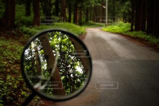 雨上がりの林道を行くの写真・画像素材[2244862]