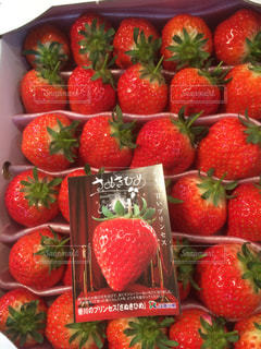 果物や野菜の展示会の写真・画像素材[1038075]