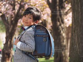 桜並木の下での写真・画像素材[1038360]