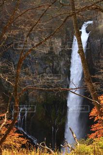 森の中の滝の写真・画像素材[1045895]