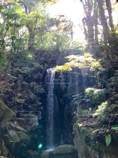 森の中の大きな滝の写真・画像素材[1066256]