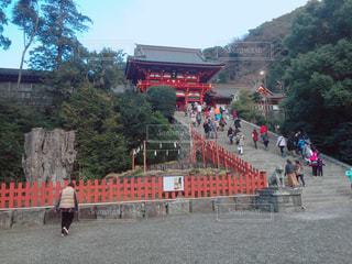 鶴岡八幡宮 - No.1040256