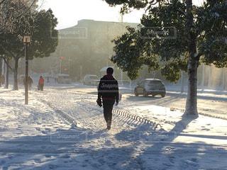 都会の雪に慣れない朝の写真・画像素材[1047642]