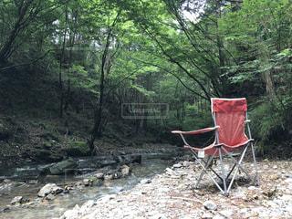 近くの森の横にある赤い椅子の写真・画像素材[710820]