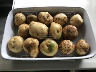 トレイの上に食べ物の種類でいっぱいのボックスの写真・画像素材[1249302]
